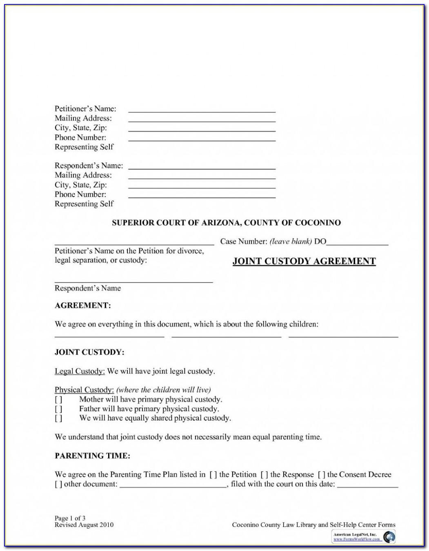 Child Custody Agreement Template Bc