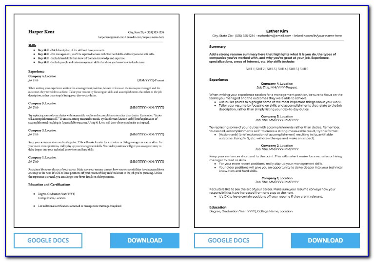 Chronological Resume Format Free