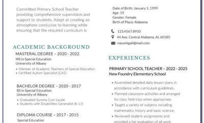 Best Examples Of Curriculum Vitae