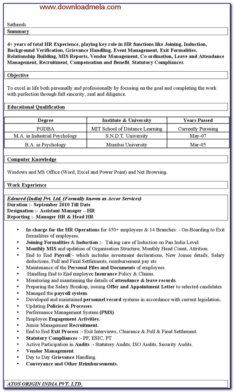 Assistant Manager Mis Resume Format