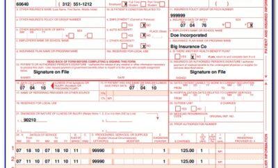 1500 Health Insurance Claim Form Example