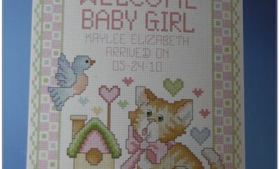 Stamped Cross Stitch Baby Birth Record Kit